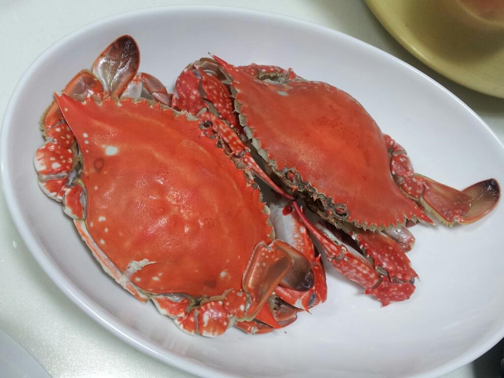 korean food recipe_20131104_4