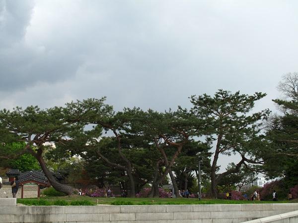 life in korea_20150219_7